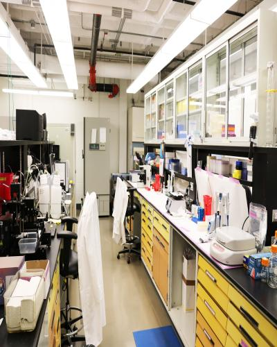lab bench space
