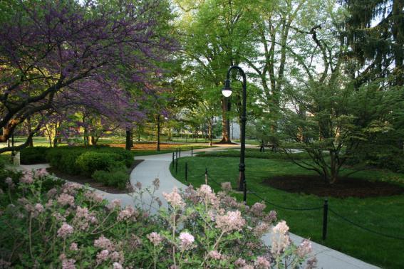 Penn State campus sidewalks